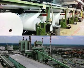 pabrik pulp & paper terbesar Indonesia