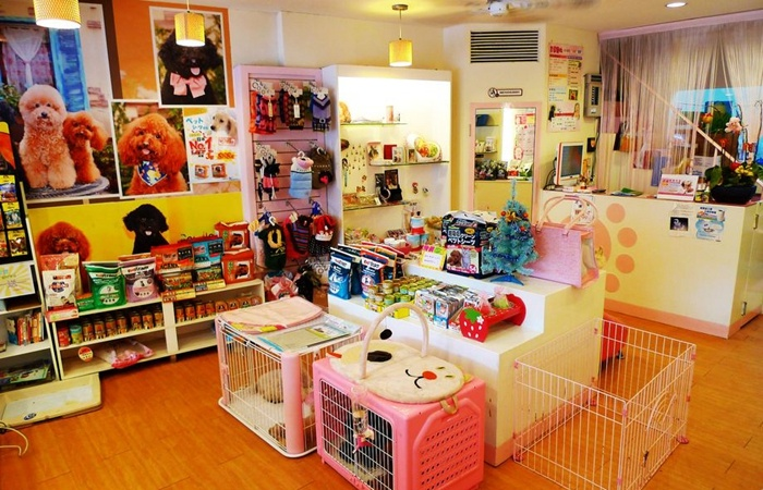 Nice Pet Products Factory: How To Open A Profitable Pet