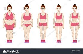 Slim over 55 Review slim over 55 workout plan [2020 updated]