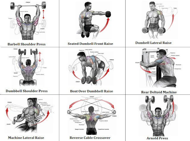 2 Shoulder Routines to Get the Best Shoulder Workout