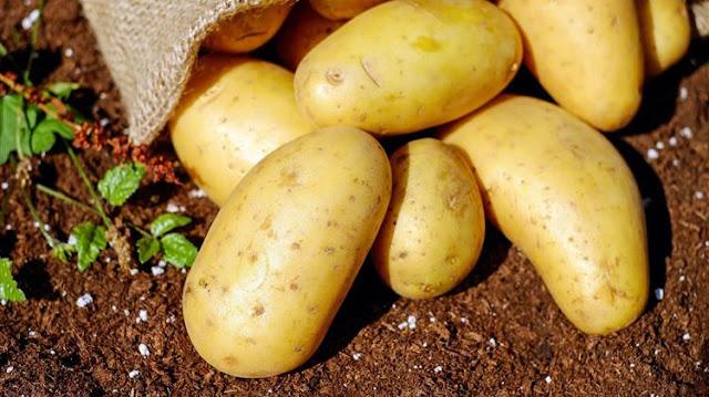 Στήριξη ζητούν οι παραγωγοί πατάτας και μοσχοφίλερου στην Αρκαδία