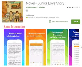 Novel - Junior Love Story