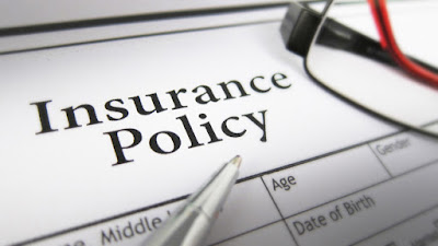 12 amazing facts about insurance