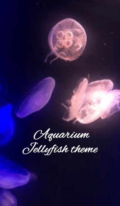 Aquarium Jellyfish.