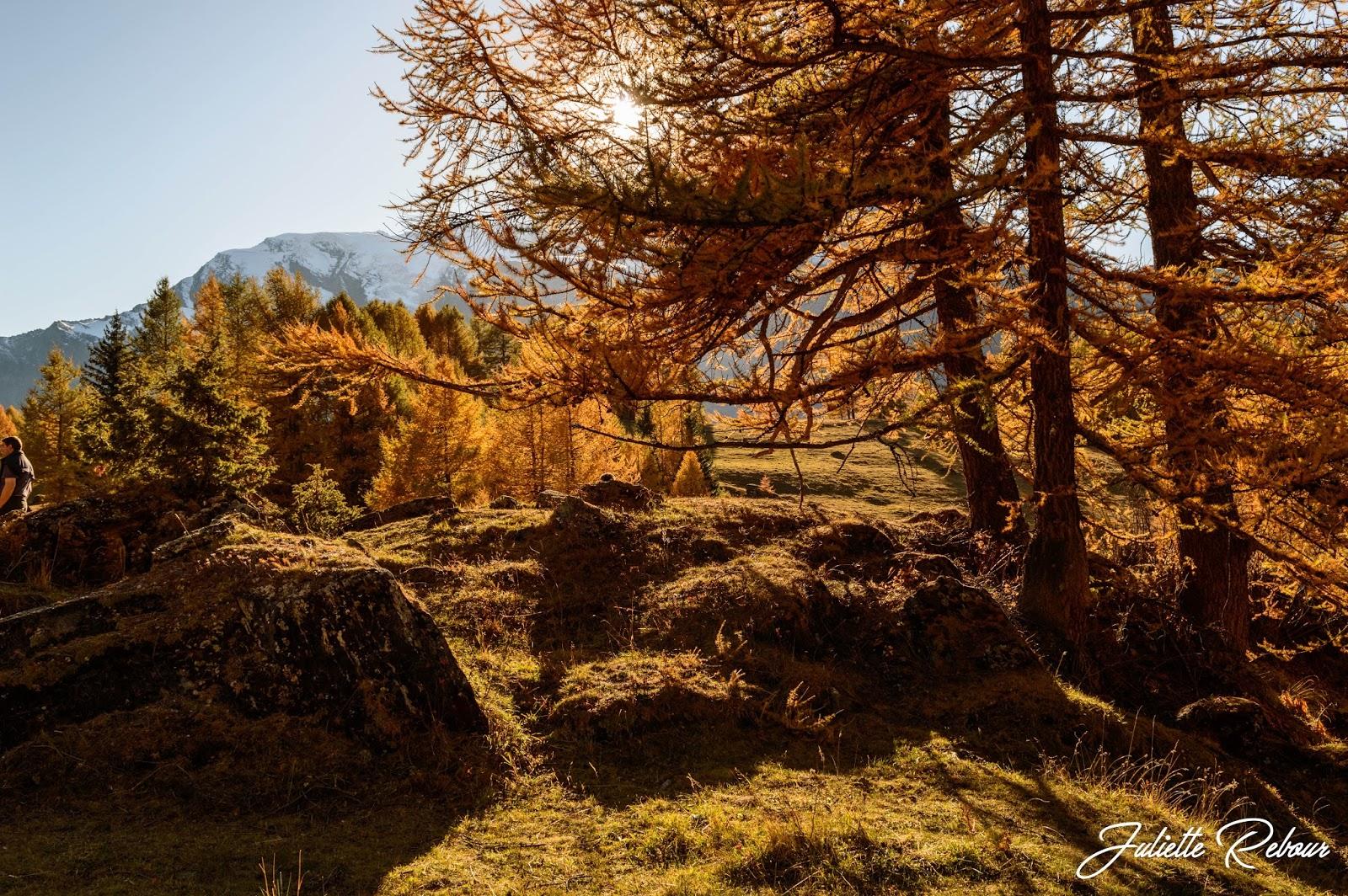 L'automne en Montagne, Savoie