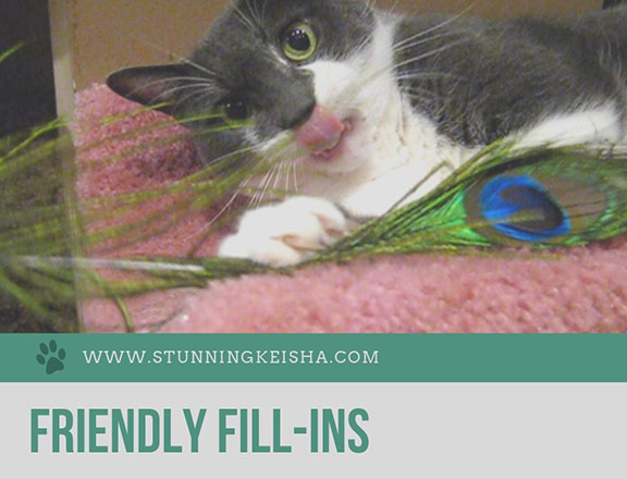Friendly Fill-Ins From the Furious Feline