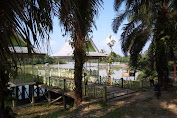 Karang Taruna Siap Mensukseskan Festival Pacu Perahu Tradisional di Danau Sigombak