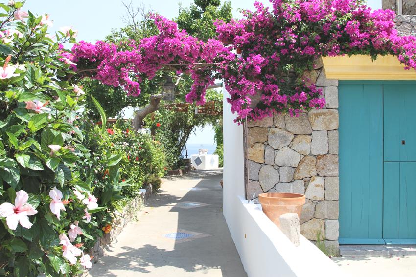 Co zobaczyć na wyspie Panarea?