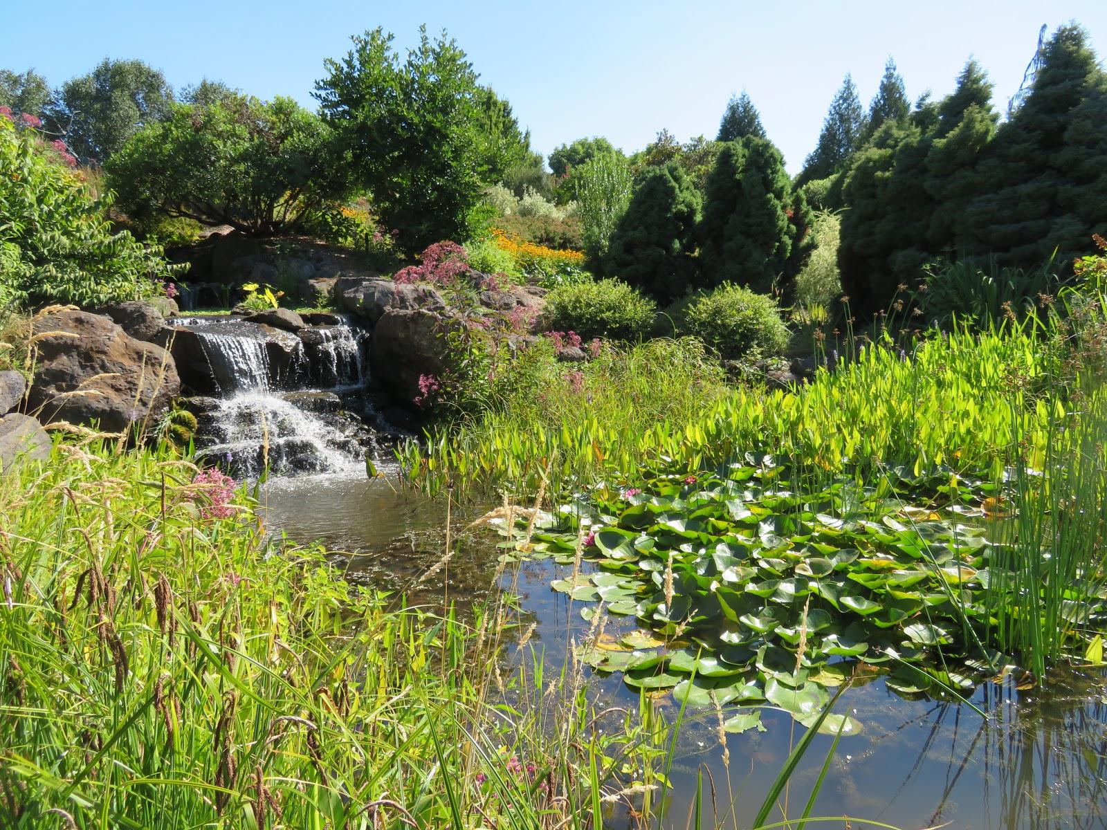 the larger garden is categorized into some 20 specialty gardens including a childrens garden a pet friendly garden a conifer garden wetlands and more - The Oregon Garden