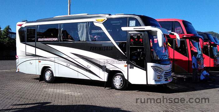 Denah Tempat Duduk Bus Pariwisata Medium Seat 2-2