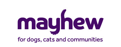 Duchess of Sussex's  Mayhew Animal Welfare Patronage adapting well to Covid-19 issues