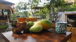 Buah-buahan di ARK Corner