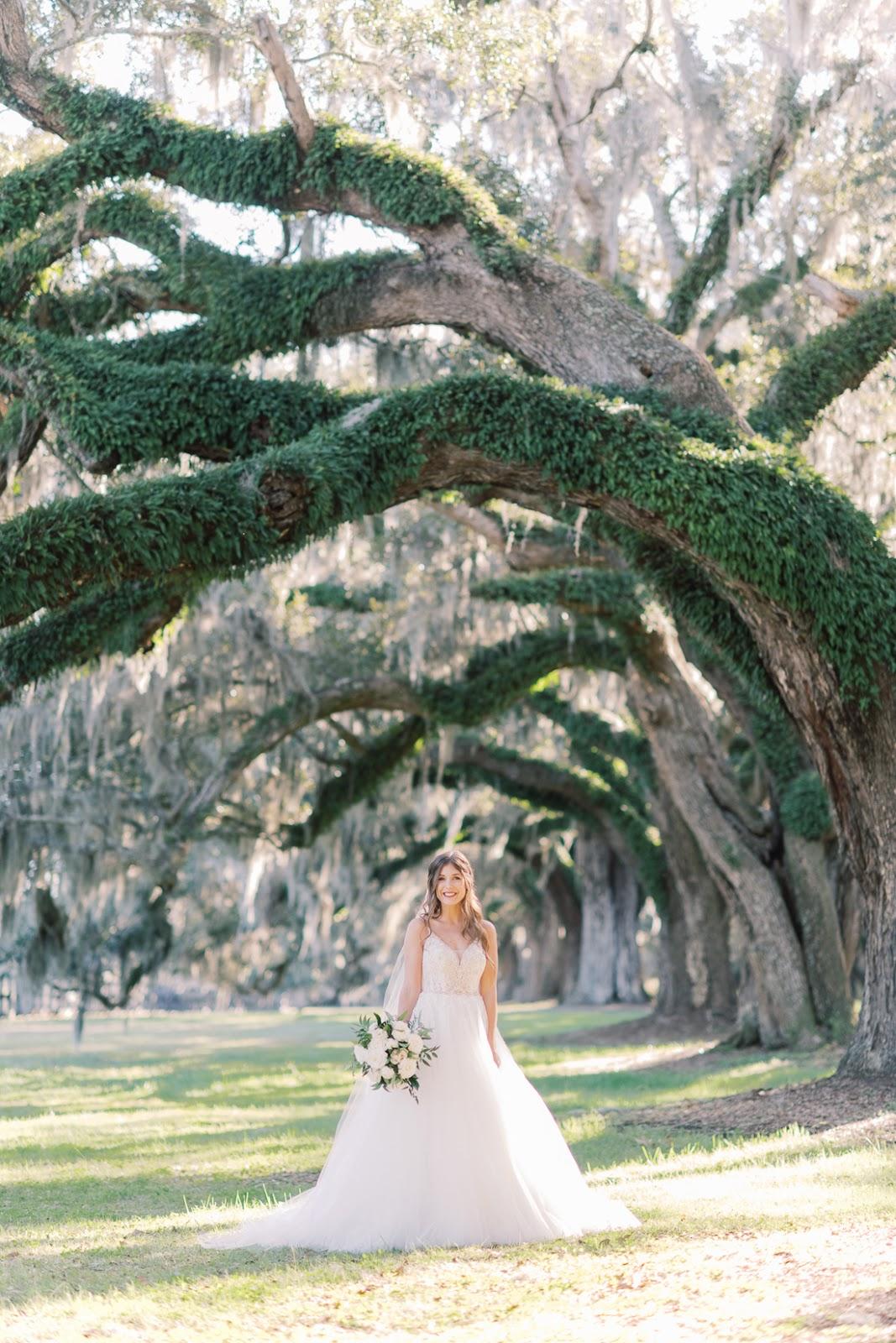 Boone Hall Plantation Bridal Portraits - Chasing Cinderella