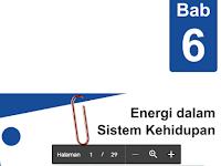 Materi Bab 6 Energi Dalam Sistem Kehidupan