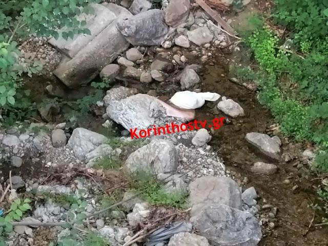 Φρίκη στην Αργολίδα: Έκλεισαν νεογέννητα κουταβάκια σε σακούλα και τα πέταξαν σε ρέμα