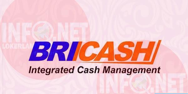 Lowongan Kerja Lampung Admin Accounting BRI Cash