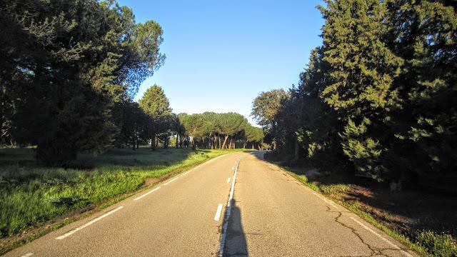 Casa de Campo - Subida Zarzón