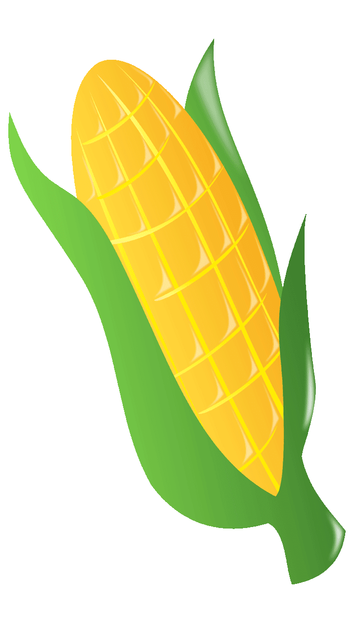 15 Surprising Corn Clipart For Free Fruit Names A Z With