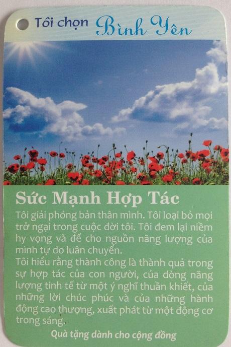 HINH-ANH-BO-THE-GIA-TRI-TOI-CHON-BINH-YEN-HANH-PHUC-SUC-MANH-HOP-TAC-INNERSPACE
