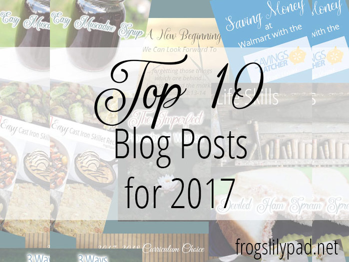 Top 10 Blog Posts for 2017 at Frog's Lilypad