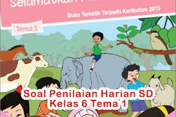 Soal Penilaian Harian SD Kelas 6 Tema 1