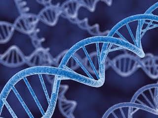 DNA Mampu Menyimpan Memori 2,2 Juta GB Per Gram