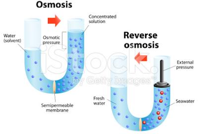 Pengertian dan Perbedaan Osmosis dan Difusi