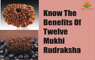 KNOW THE BENEFITS OF TWELVE MUKHI RUDRAKSHA