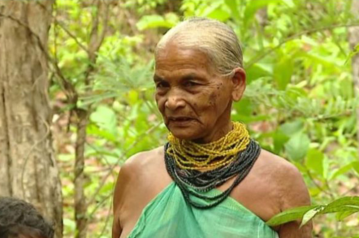 TULASI GOWADA: ENCYCLOPEDIA OF FOREST
