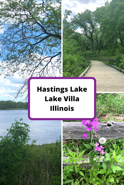 Basking in Nature at Hastings Lake Forest Preserve in Lake Villa, Illinois