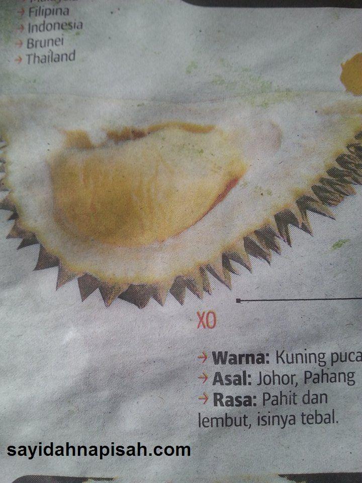 7 Jenis Durian Yang Popular Di Malaysia