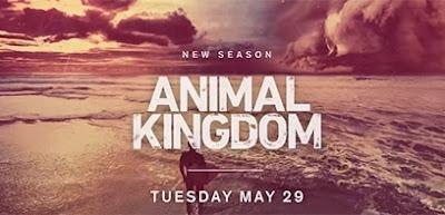 Comment regarder Animal Kingdom saison 3 sans attendre