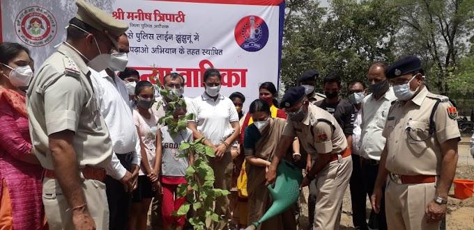 """जिले में """"अमृता कन्या वाटिका"""" के रूप में हुआ नवाचार-Innovation in the form of """"Amrita Kanya Vatika"""" in the district Jhunjhunu"""