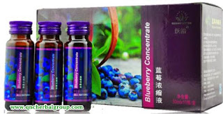 Agen Blueberry Concentrate Tasikmalaya