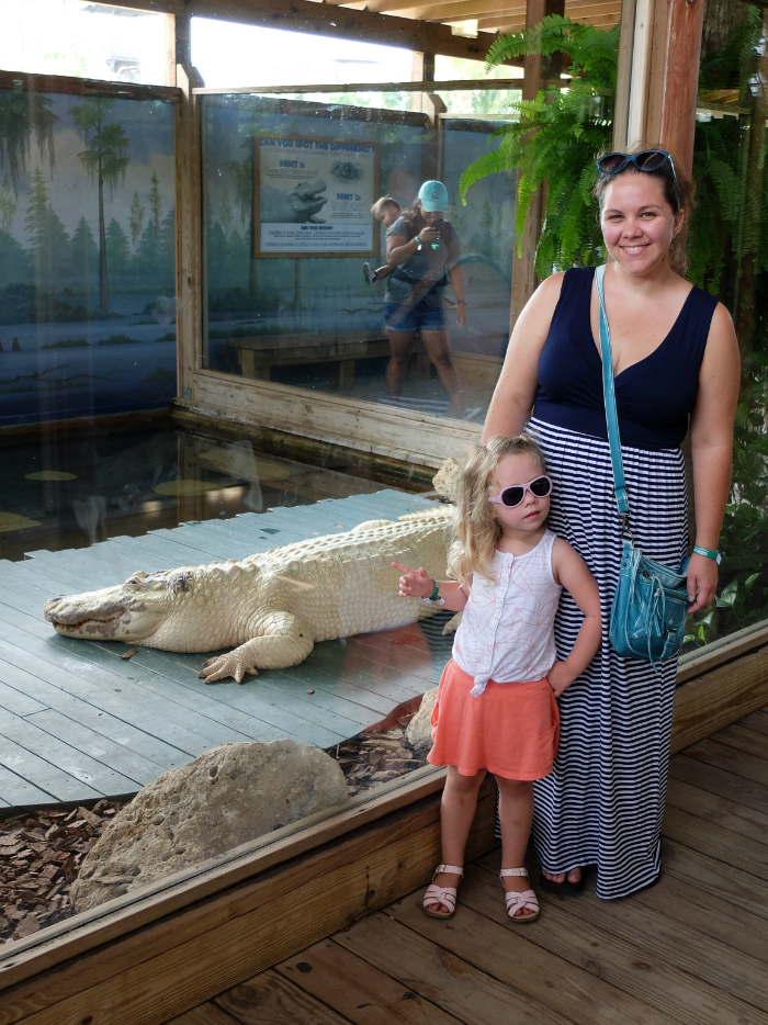 Things to do in Florida, Florida vacation, Gatorland Florida