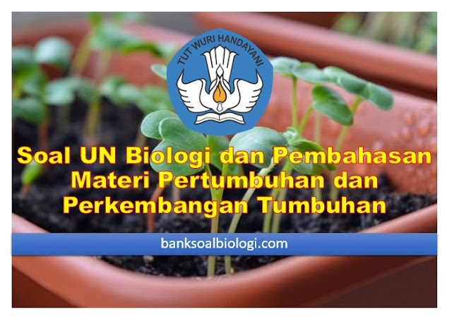 Soal UN Biologi dan Pembahasannya, Materi Pertumbuhan dan Perkembangan