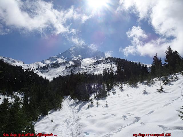 McNeil Point Hike Mt hood