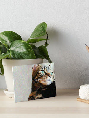 tabby cat art board