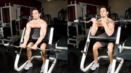 Daftar Dan Gambar Alat Fitnes Beserta Fungsinya Zona Pelatih