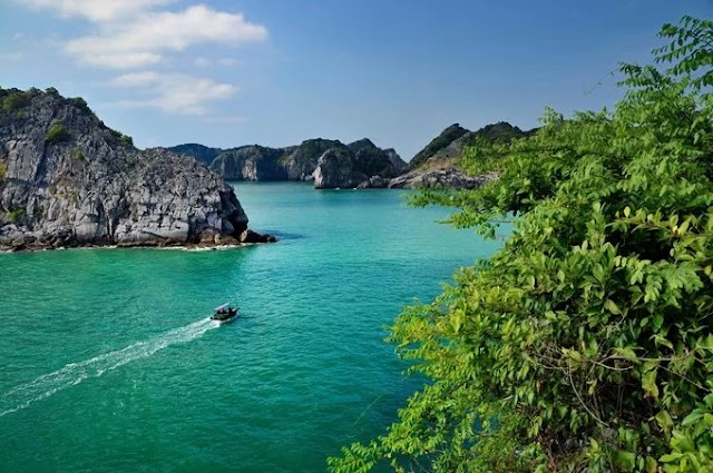 The islands in Vietnam are loved by foreigners