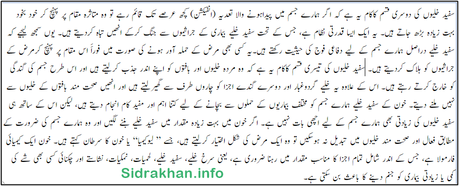 White Blood Cells urdu