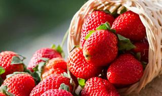 10 Manfaat Buah Strawberry untuk Kesehatan