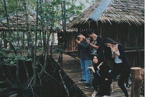 bintan mangrove 3