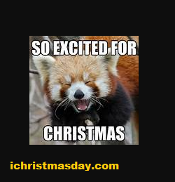 christmas memes for funny