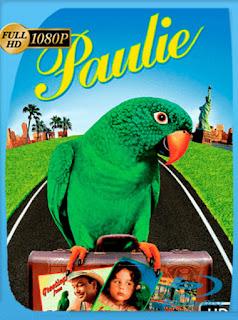Paulie [1997] HD [1080p] Latino [GoogleDrive] SilvestreHD