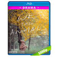 We the Animals (2018) BDRip 1080p Audio Dual Latino-Ingles