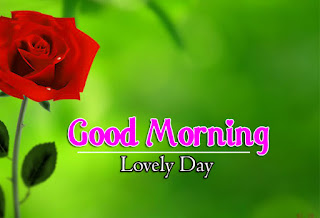 New Good Morning 4k Full HD Images Download For Daily%2B41