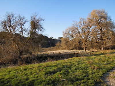 West of Salinas River Trail through Larry Moore Park, © B. Radisavljevic