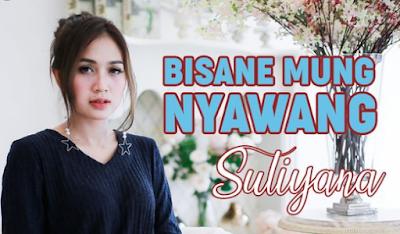 Download Kumpulan Lagu Suliana Terbaru 2020 Mp3 Full Album