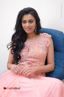 Actress Neha Hinge Stills in Pink Long Dress at Srivalli Teaser Launch  0118.JPG